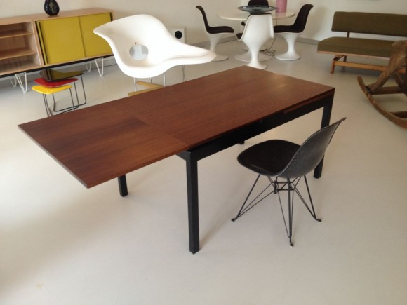 Elastique Willy Guhl Dining Table Tisch 3