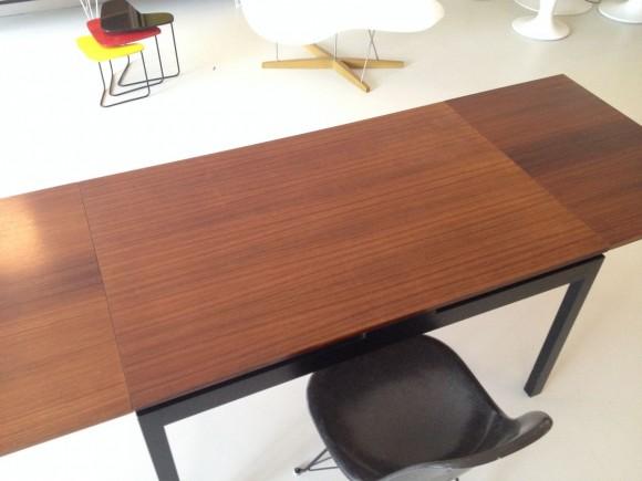 Elastique Willy Guhl Dining Table Tisch 4